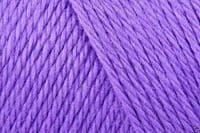 Caron Simply Soft Acrylic Aran Knitting Wool Yarn 170g -9610 Grape